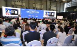 德国汉堡科学院院士张建伟:人工智能将成为中国发展新红利