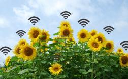 物联网的农业监测系统提升智慧农业升级