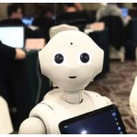 软银PEPPER机器人 本体可定制 个性化设计 人形机器人
