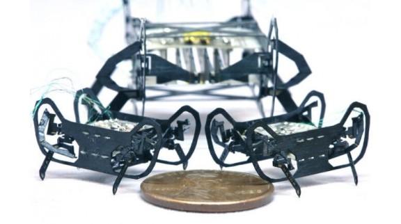 哈佛受蟑螂启发的机器人突破又一极限 缩小至硬币大小仅重0.3克!