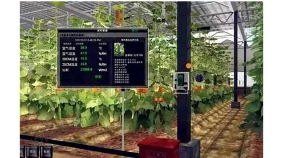 【智慧农业】中国未来农业的机遇