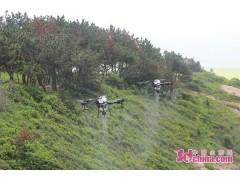 青岛田横岛灭蚊蝇用上无人机