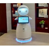 小雪迎宾机器人 穿山甲机器人