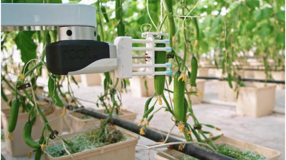 农业的未来?支持AI的收割机器人又有了新的技能