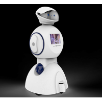 艾娃客服一代 艾娃机器人 客服机器人