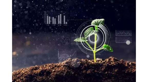 顺丰开辟农业专业通道 助推智慧农业升级
