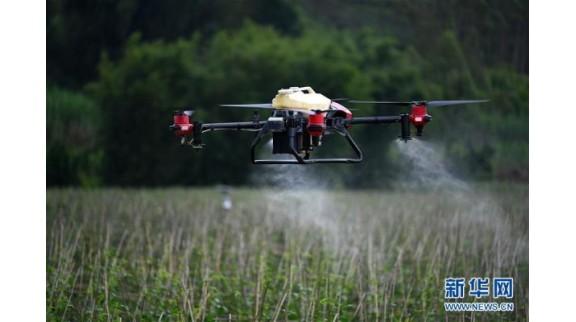 广西柳州:智慧农业科技助力农产品丰收