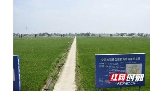 益阳赫山:智慧农业开启种地新时代