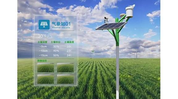 市场主体看好智慧农业发展