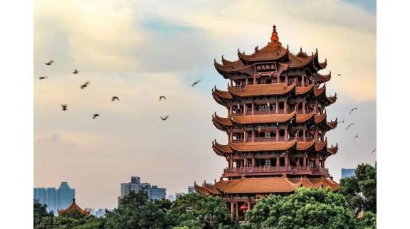 武汉启动国家新一代人工智能试验区建设,支持智慧医疗发展