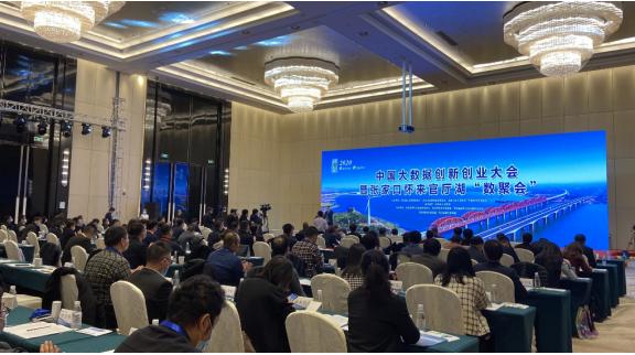 """中国大数据创新创业大会 专家""""云""""聚""""数""""说新怀来"""