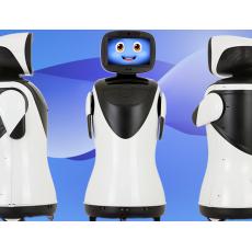 派宝舞蹈迎宾机器人P3