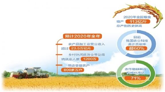 2020年全国粮食增产113亿斤 再创历史新高
