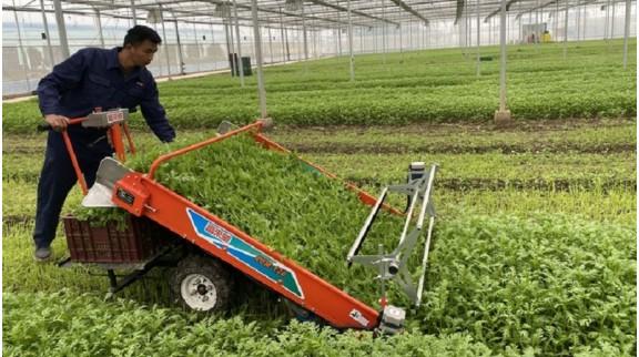 """10万亩粮食生产""""无人农场""""将在上海出现"""