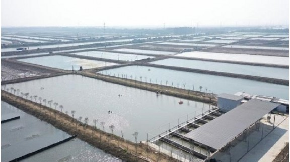 广州全力创建15个省级现代农业产业园 加快推进现代农业建设