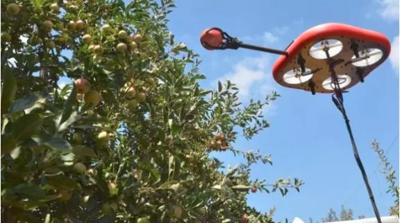 这个会飞的ai智能机器人可以摘水果-防止在这个过程中浪费