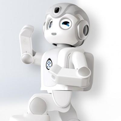 小悟空——人形机器人