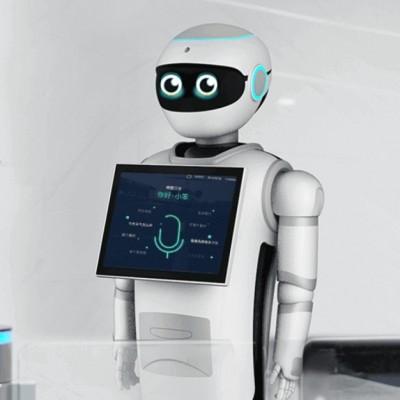 小笨——人形机器人