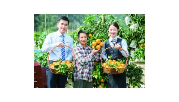 新业态、新模式、新动能 智慧农业多妙招